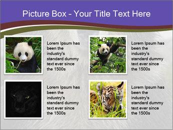 0000073656 PowerPoint Templates - Slide 14