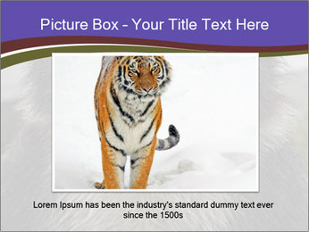 0000073656 PowerPoint Templates - Slide 16