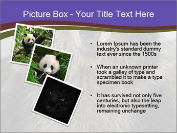0000073656 PowerPoint Template - Slide 17