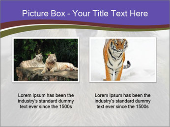 0000073656 PowerPoint Template - Slide 18