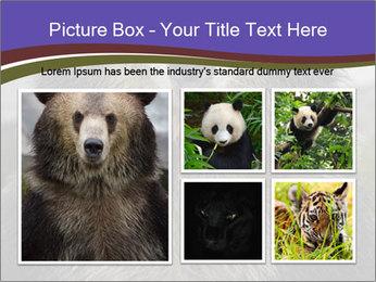 0000073656 PowerPoint Templates - Slide 19