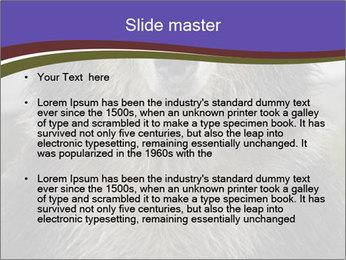 0000073656 PowerPoint Templates - Slide 2