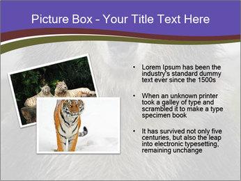 0000073656 PowerPoint Templates - Slide 20