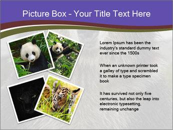 0000073656 PowerPoint Templates - Slide 23