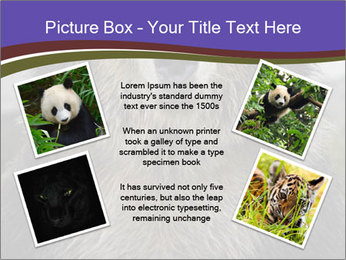 0000073656 PowerPoint Templates - Slide 24