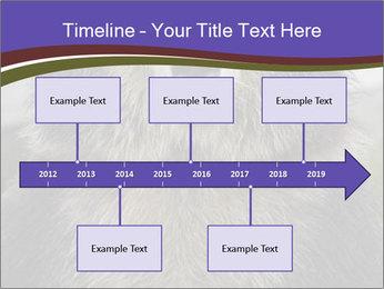 0000073656 PowerPoint Templates - Slide 28