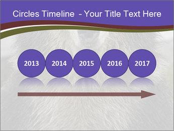 0000073656 PowerPoint Templates - Slide 29