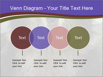 0000073656 PowerPoint Templates - Slide 32