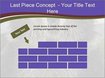 0000073656 PowerPoint Templates - Slide 46