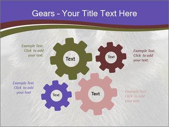 0000073656 PowerPoint Templates - Slide 47