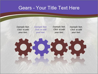 0000073656 PowerPoint Templates - Slide 48