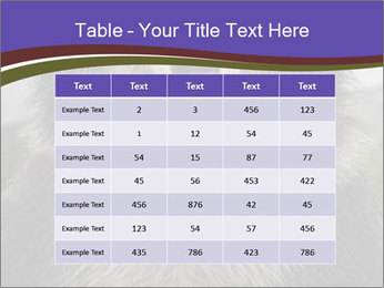0000073656 PowerPoint Templates - Slide 55