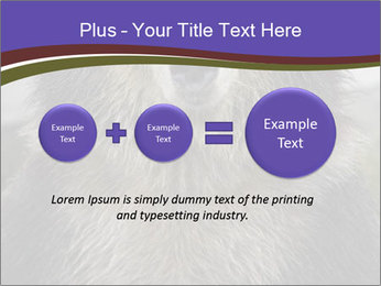 0000073656 PowerPoint Template - Slide 75