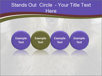 0000073656 PowerPoint Templates - Slide 76