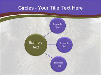 0000073656 PowerPoint Templates - Slide 79
