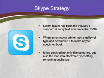 0000073656 PowerPoint Template - Slide 8