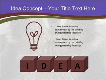 0000073656 PowerPoint Templates - Slide 80