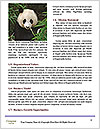 0000073656 Word Templates - Page 4