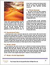 0000073676 Word Template - Page 4
