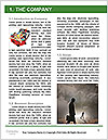 0000073678 Word Template - Page 3