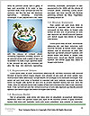 0000073678 Word Template - Page 4