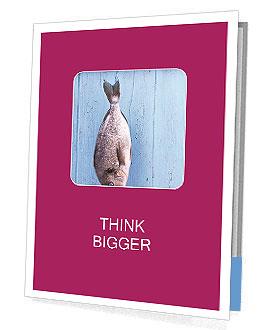 0000073680 Presentation Folder