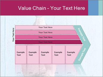 0000073680 PowerPoint Templates - Slide 27