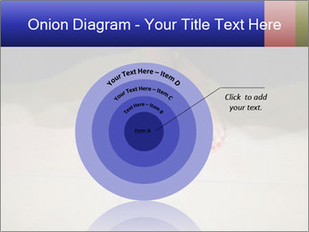0000073687 PowerPoint Template - Slide 61