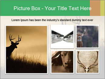 0000073701 PowerPoint Template - Slide 19