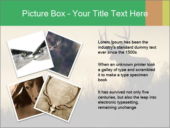 0000073701 PowerPoint Templates - Slide 23