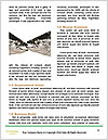0000073701 Word Template - Page 4