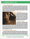 0000073701 Word Template - Page 8