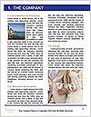 0000073713 Word Template - Page 3