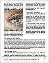 0000073716 Word Templates - Page 4