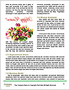0000073720 Word Template - Page 4