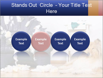 0000073726 PowerPoint Template - Slide 76