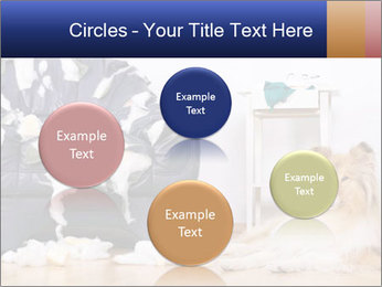 0000073726 PowerPoint Template - Slide 77