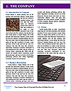 0000073731 Word Template - Page 3