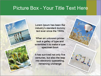 0000073742 PowerPoint Template - Slide 24