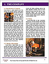 0000073744 Word Templates - Page 3