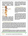 0000073748 Word Template - Page 4