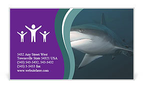0000073753 Business Card Template