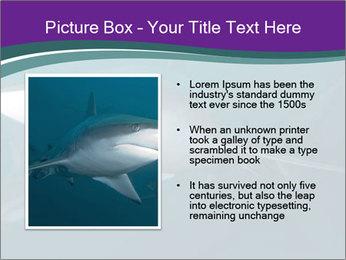0000073753 PowerPoint Template - Slide 13