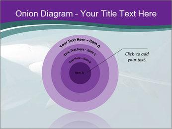 0000073753 PowerPoint Template - Slide 61
