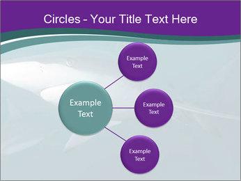 0000073753 PowerPoint Template - Slide 79