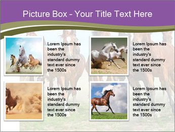 0000073761 PowerPoint Template - Slide 14