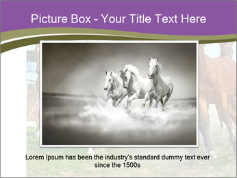 0000073761 PowerPoint Template - Slide 16