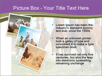 0000073761 PowerPoint Template - Slide 17