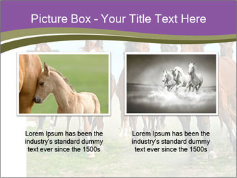 0000073761 PowerPoint Template - Slide 18