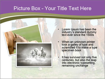 0000073761 PowerPoint Template - Slide 20